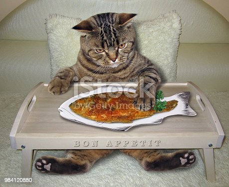 istock Cat eats fried fish on the bed 984120880