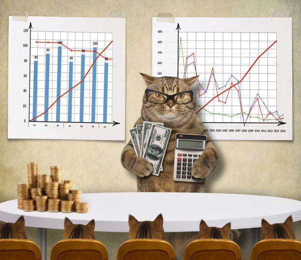 Cat economist 1 stock photo