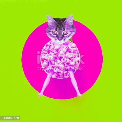 istock Cat face instead of a head of the doll among the popcorn. 968882778