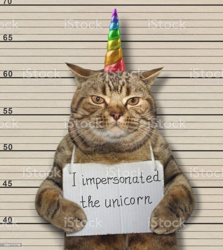 Cat fake unicorn in a prison stock photo