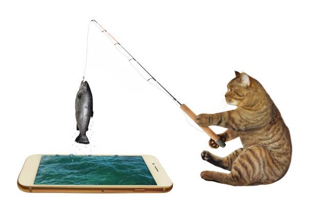 Cat fishing in phone picture id1200981002?b=1&k=6&m=1200981002&s=612x612&w=0&h=ma wr5ns62q15btwxgd9mazyc3 ft ubqri3or2mwwk=