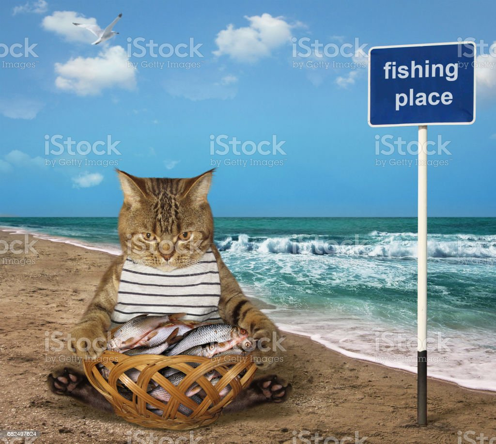 Cat fishman with a basket of fish Lizenzfreies stock-foto
