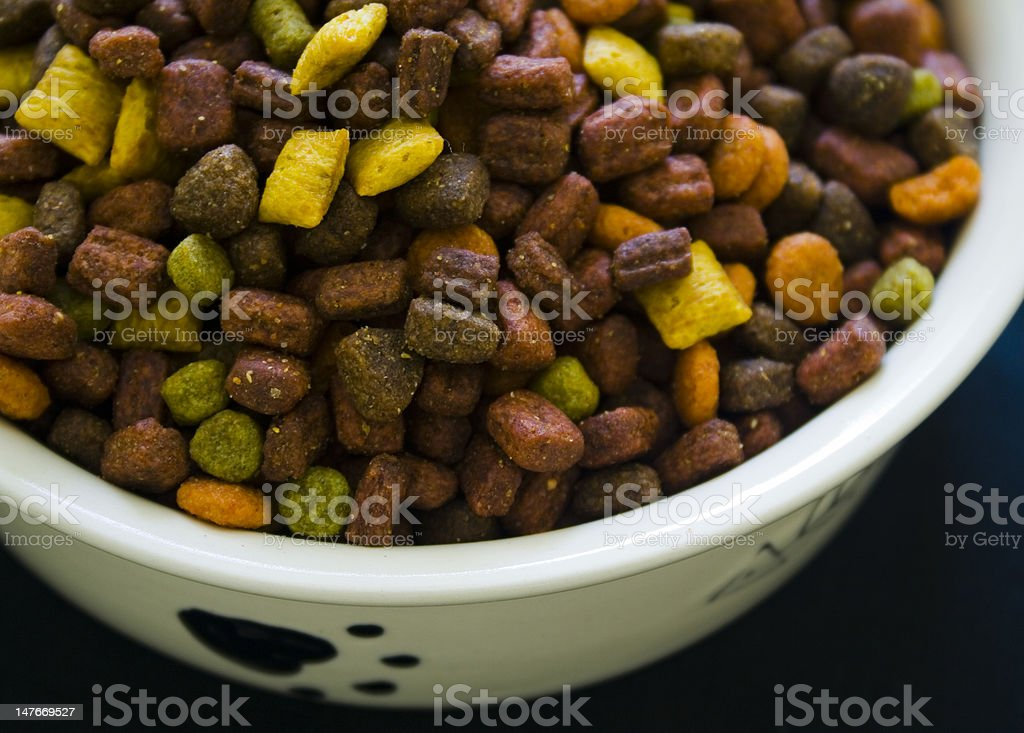 Cat Food And White Bowl stock photo