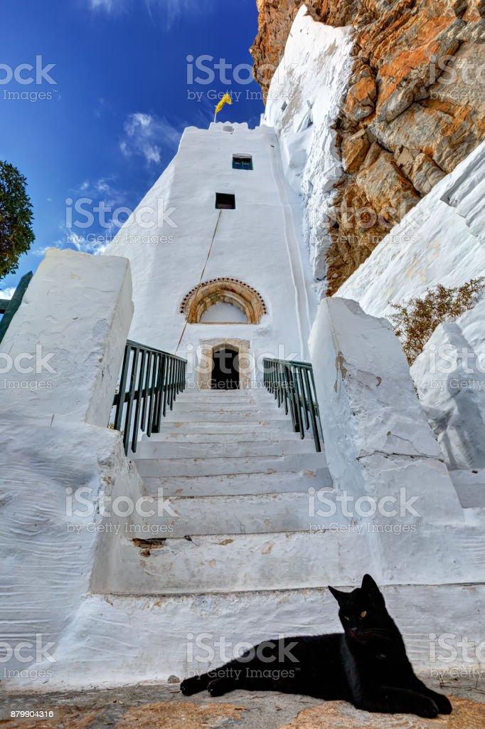 Cat guarding the entrance of the Hozoviotissa monastery in Amorgos island, Greece stock photo