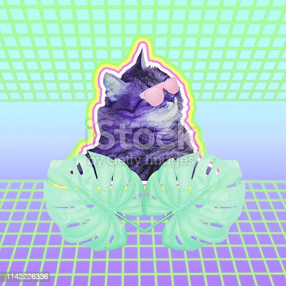 1125575680 istock photo cat head in sunglasses and palm or monstera leaves. Neon road background with gradient colors 1142226336