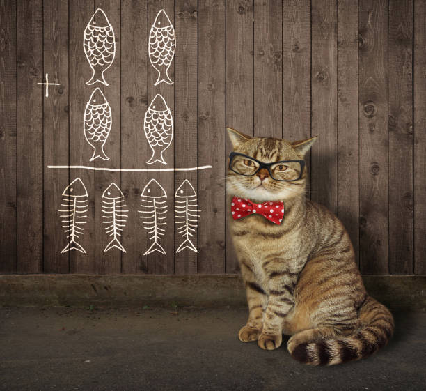 Cat in glasses near a fence 2 stock photo
