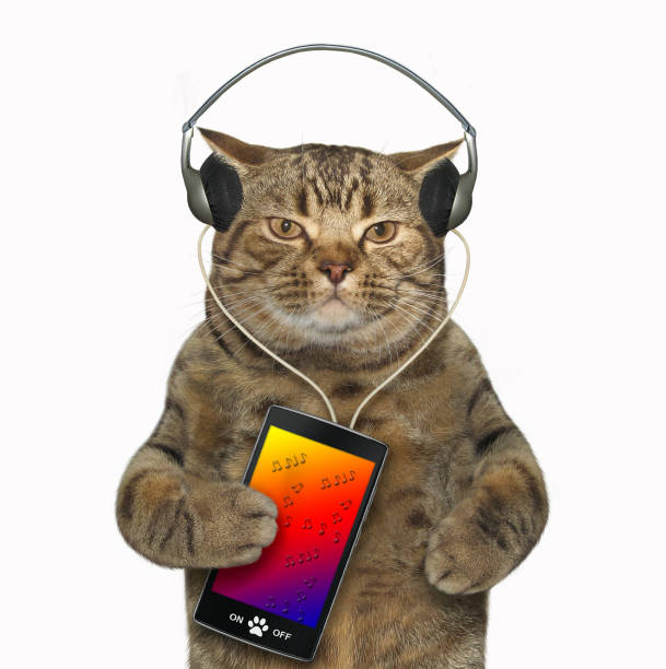 Cat in headphones with a smartphone 2 picture id1063245912?b=1&k=6&m=1063245912&s=612x612&w=0&h=akyq6ow x9syf7o77x2cqczaupembahzcozkvzi exg=