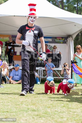 Naples, Florida, United States - October 25, 2015:  A man dressed up as the character Cat in a Hat with his two French Bulldogs, walk the outdoor runway at the Collier County Humane Society's Strut You Mutt event.