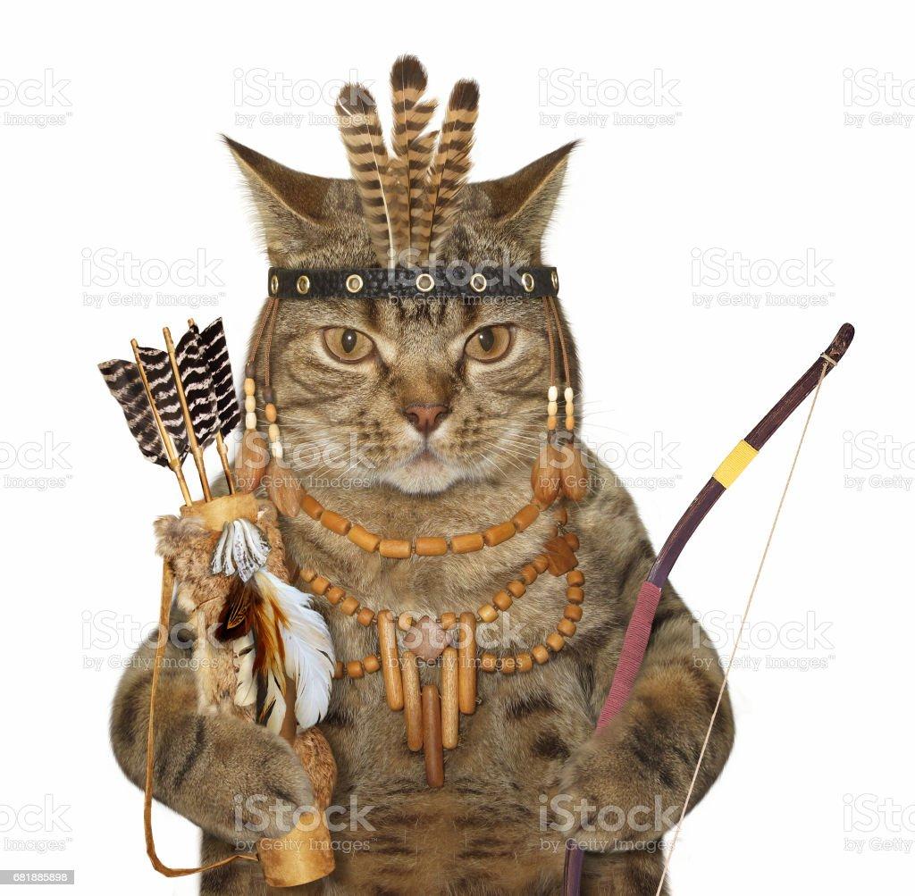 Gato indio con un arco y una flechas - foto de stock