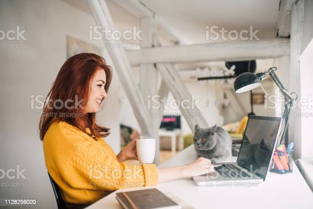 Cat looking at girl using laptop picture id1128256020?b=1&k=6&m=1128256020&s=612x612&h=vro7qwrch3q7nravp666hrge6mbeywo3xrvexsbaawe=