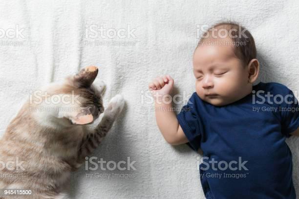 Cat lying near newborn babytop view picture id945415500?b=1&k=6&m=945415500&s=612x612&h=kzqf1m0 nlj5biaojmibitlo6sw3wp8eagd26t tkpk=