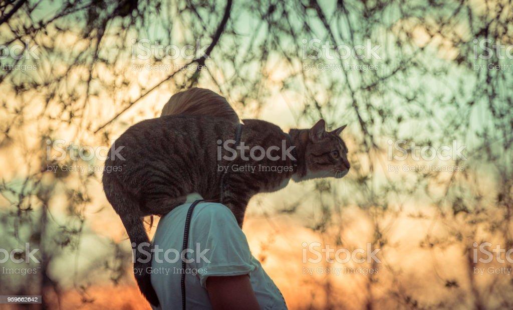 Gato con una correa. Una chica se hace caminando con un gato que se sienta en su hombro - Foto de stock de Acostado libre de derechos