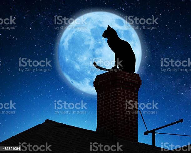 Cat on a roof picture id487321084?b=1&k=6&m=487321084&s=612x612&h=ko8xptjpwrvi9gop82cbfz1oc xidxqtoci61zn plw=