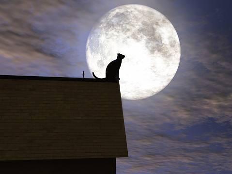 Cat on a roof with the moon in the background