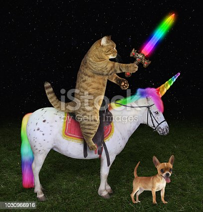 The cat with a rainbow sword is riding the real unicorn.