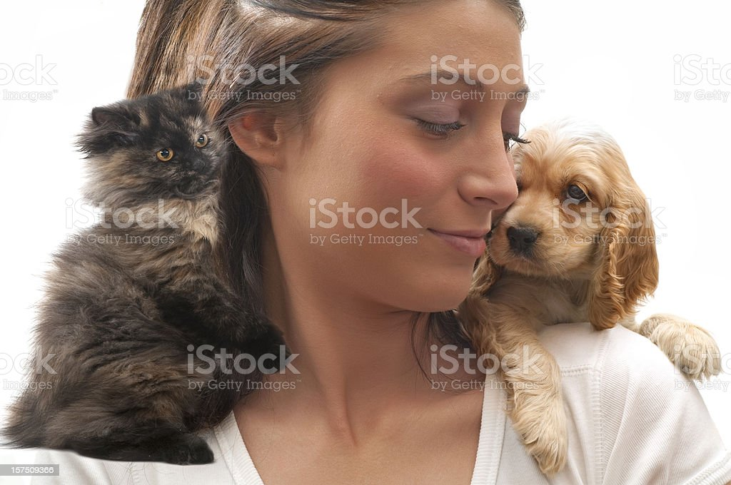 cat or dog? royalty-free stock photo
