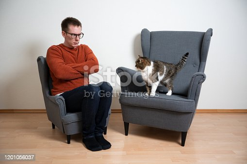 funny concept image of pet owner sitting on mini armchair next to normal sized armchair with cat standing on looking at each other sulking