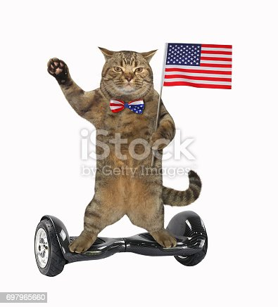 490776989 istock photo Cat patriot 17 697965660