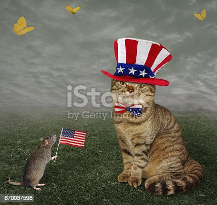 490776989 istock photo Cat patriot with his friend rat 670037598