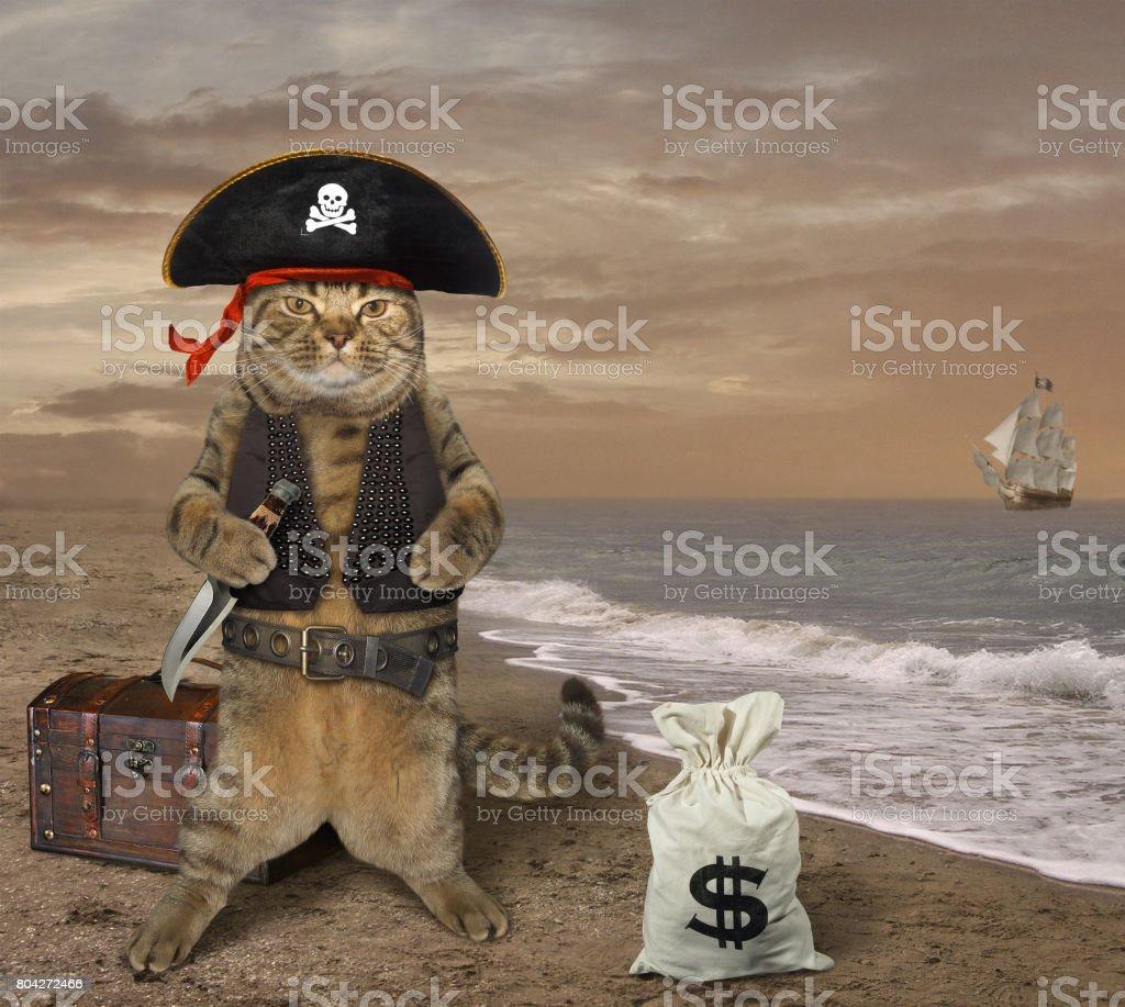 Pirat CAT 3 - foto de stock