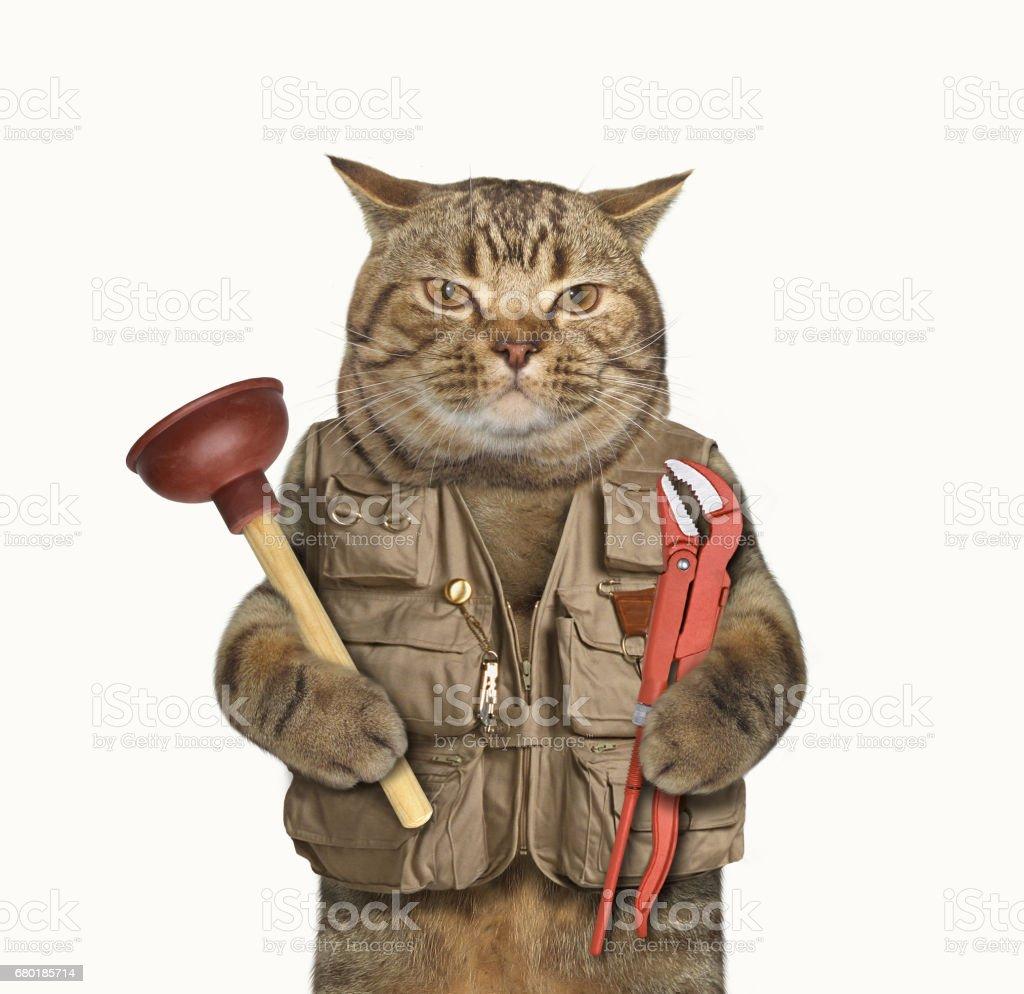 Cat plumber 1 stock photo