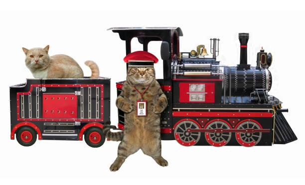 Cat railwayman near a train picture id959079566?b=1&k=6&m=959079566&s=612x612&w=0&h=qqtdbozy5zp wmidha2w0doggalxoa3rsdutodqfkus=