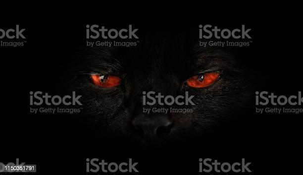 Cat red evil eyes picture id1150351791?b=1&k=6&m=1150351791&s=612x612&h=iak  sdrtosfs1gydn28dlxa5 cxyhcvwnu1xmipis0=