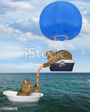 The cat rescuer in a blue hot air balloon is giving some sausages to another cat drifting in the bathtub in the sea after shipwreck.