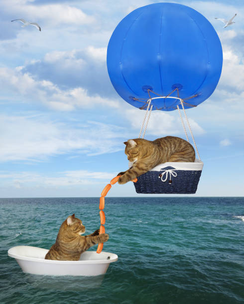Cat rescuer in a blue hot air balloon picture id1164096778?b=1&k=6&m=1164096778&s=612x612&w=0&h=ktxumpx4pvs p6qwbebzrnchper72fybucolagcfjtg=