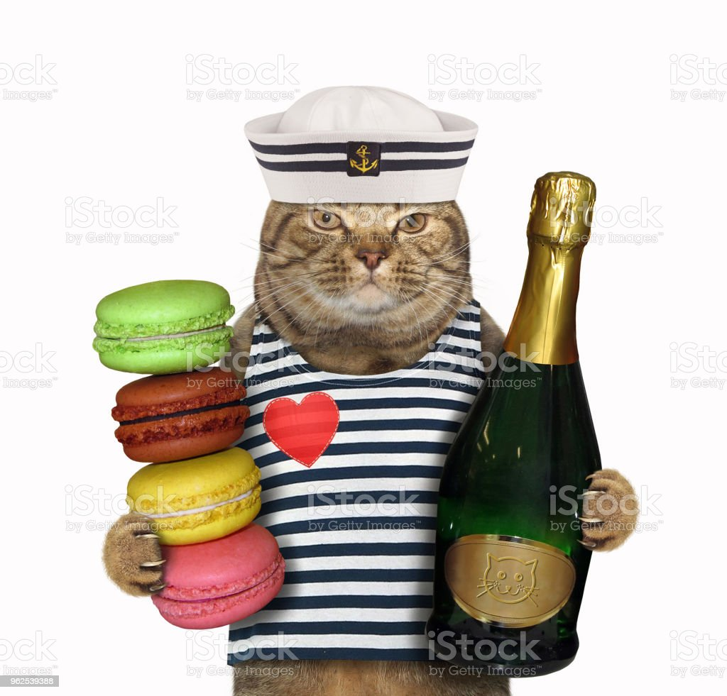 Cat sailor with wine and cookies - Royalty-free Biscuit Stock Photo