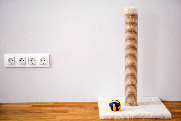 Cat scratching post and ball toy standing near wall indoors picture id1268447980?b=1&k=6&m=1268447980&s=612x612&w=0&h=xbelkjkpbbedp   ajc3jqvwwqvnj8npaien7vpqumu=
