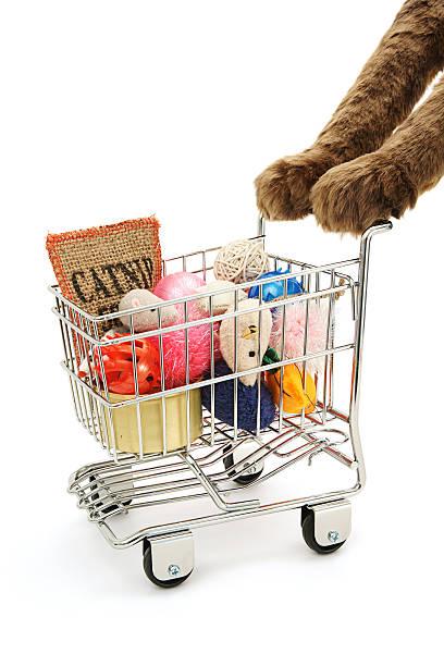 Cat shopping picture id182515843?b=1&k=6&m=182515843&s=612x612&w=0&h=6xyn07ziudtefwfs44qkjqatsr2hvo0dcqaexwgyfzk=