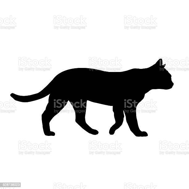 Cat silhouette isolated on white picture id528738023?b=1&k=6&m=528738023&s=612x612&h= is7gw vkucf0gfmgdjnotlfstrdqhznagve9ukkhxq=