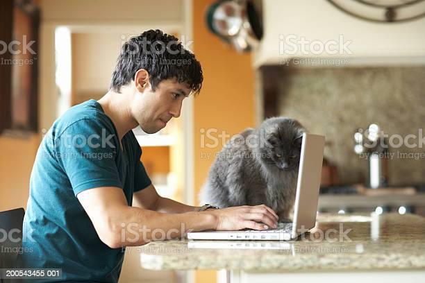 Cat sitting beside man using laptop in domestic kitchen side view picture id200543455 001?b=1&k=6&m=200543455 001&s=612x612&h=mkj7nameafuymnfcaon7gdtsgu9szlueor0pekj2grg=