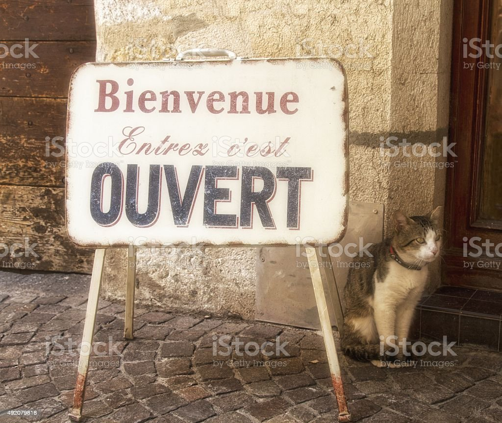 cat sitting next to a french shop sign stock photo