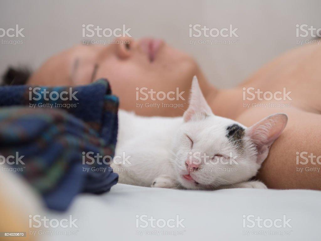 Sono de gato com seu dono - foto de acervo