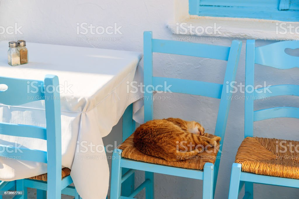 A cat sleeping on a chair in Greek tavern, Naoussa village, Paros island, Greece stock photo