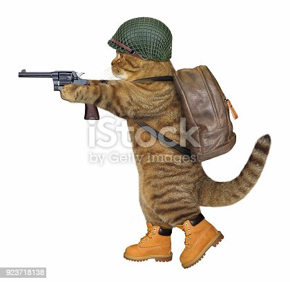 istock Cat soldier with a revolver 923718138