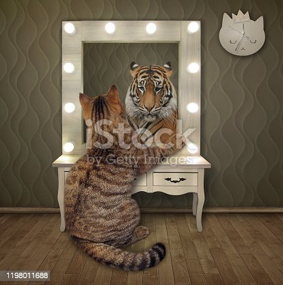 The beige cat is staring in the mirror at home. He sees the tiger in his reflection.