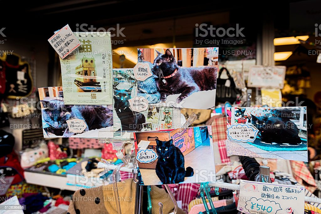 Cat Themed Shop window in Yanaka, the cats' town stock photo