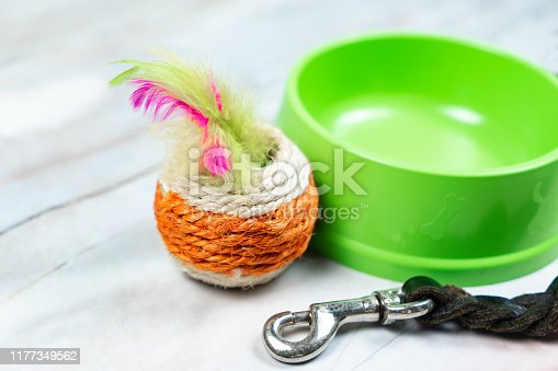 istock Cat toy, bowls and leashes with copy space. 1177349562