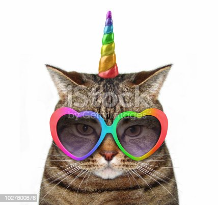 The cat unicorn is wearing cute glasses. White background.