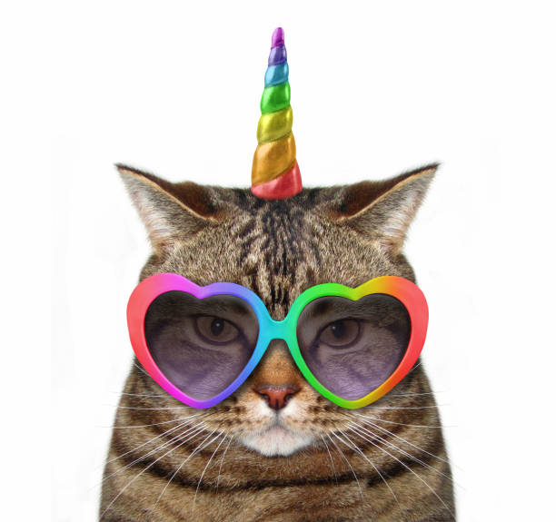 Cat unicorn in glasses The cat unicorn is wearing cute glasses. White background. horned stock pictures, royalty-free photos & images