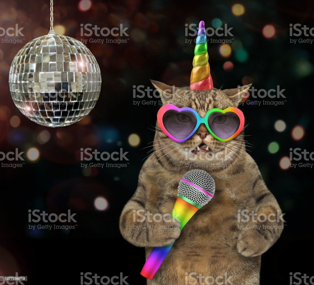 Cat unicorn singing a song at the stage stock photo