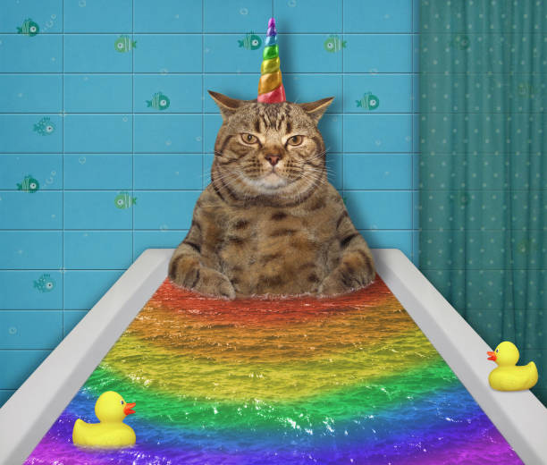 Cat unicorn takes a colored bath picture id1160051585?b=1&k=6&m=1160051585&s=612x612&w=0&h=i893iukzz1qsqssngo72y4w2dlg2l4apxtzeeuews0m=