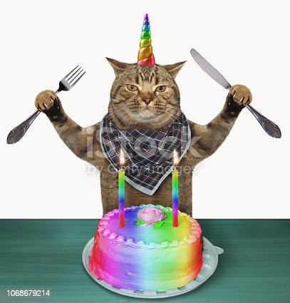 The cat unicorn with a knife and a fork is going to eat a birthday cake. White background.
