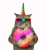 Cat unicorn with a donut