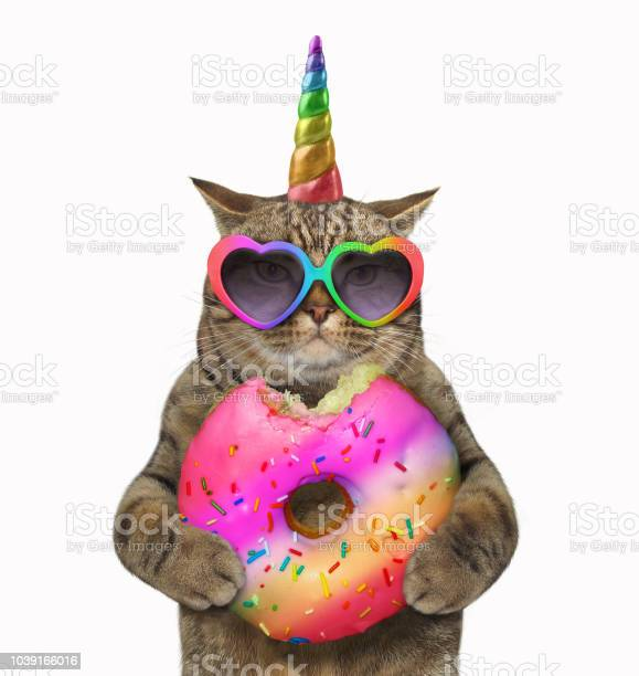 Cat unicorn with a donut picture id1039166016?b=1&k=6&m=1039166016&s=612x612&h=0x4nbzdye8rwxilqch5mbqohltr6k2iiop5moggrrdy=