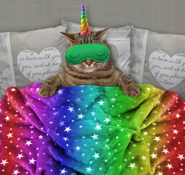 cat unicorn with a sleep mask in the bed - unicorn bed imagens e fotografias de stock