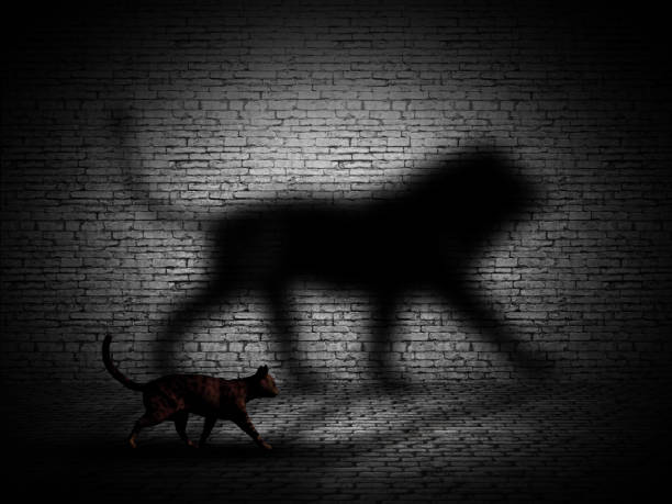 3d cat walking with lion shaped shadow against a brick wall - big cat stock pictures, royalty-free photos & images